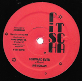 Joe Morgan - Forward Ever / version / You Let Me Down / version (Fish Tea / DKR) US 12""